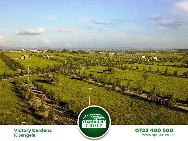 victory-gardens-plots-for-sale-in-kitengea1