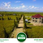 victory-gardens-plots-for-sale-in-kitengea4