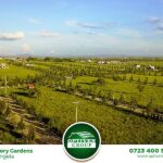 victory-gardens-plots-for-sale-in-kitengea8
